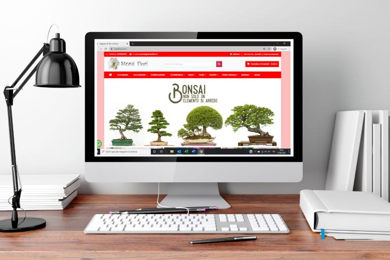 costruire siti web e-commerce torino